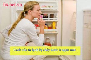 cách sửa tủ lạnh bị chảy nước ở ngăn mát