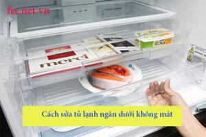 cách sửa tủ lạnh ngăn dưới không mát
