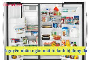 nguyên nhân ngăn mát tủ lạnh bị đông đá