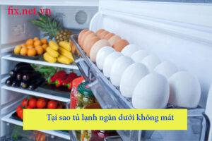 tại sao tủ lạnh ngăn dưới không mát